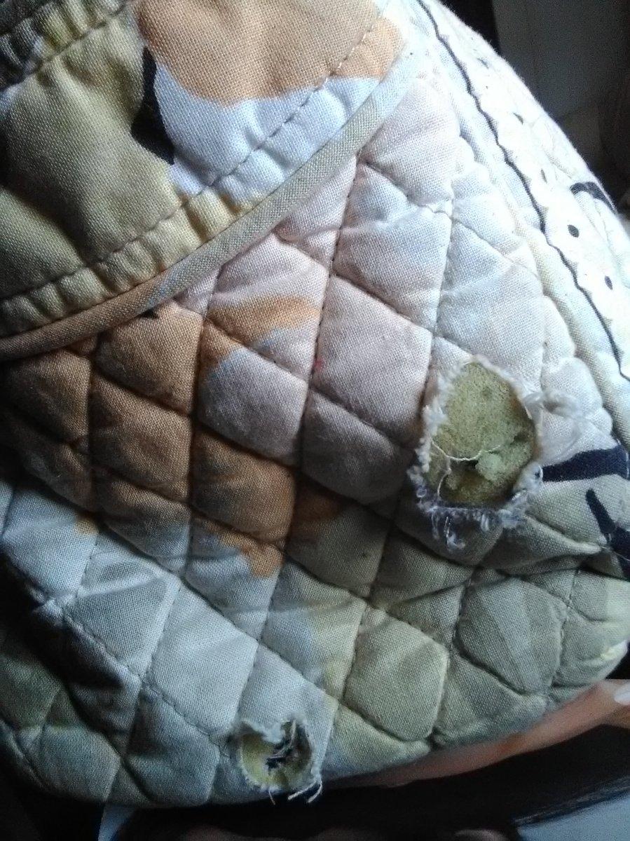 slob, humor, busted bag